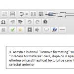 Cum se elimina formatarea textului din wordpress