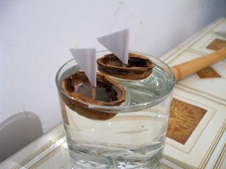 Cum sa faci o barcuta din coji de nuca