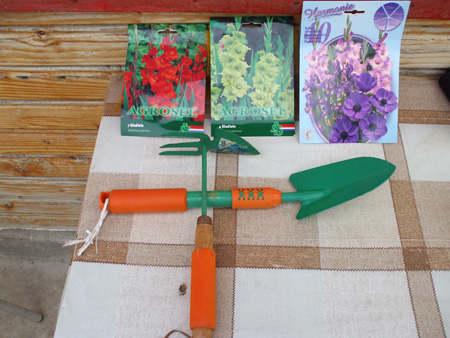 Cum sa plantezi o floare (cu bulbi)
